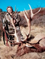 Glenroy Hunting Safaris - New Zealands Best Hunting - glenwebelk46